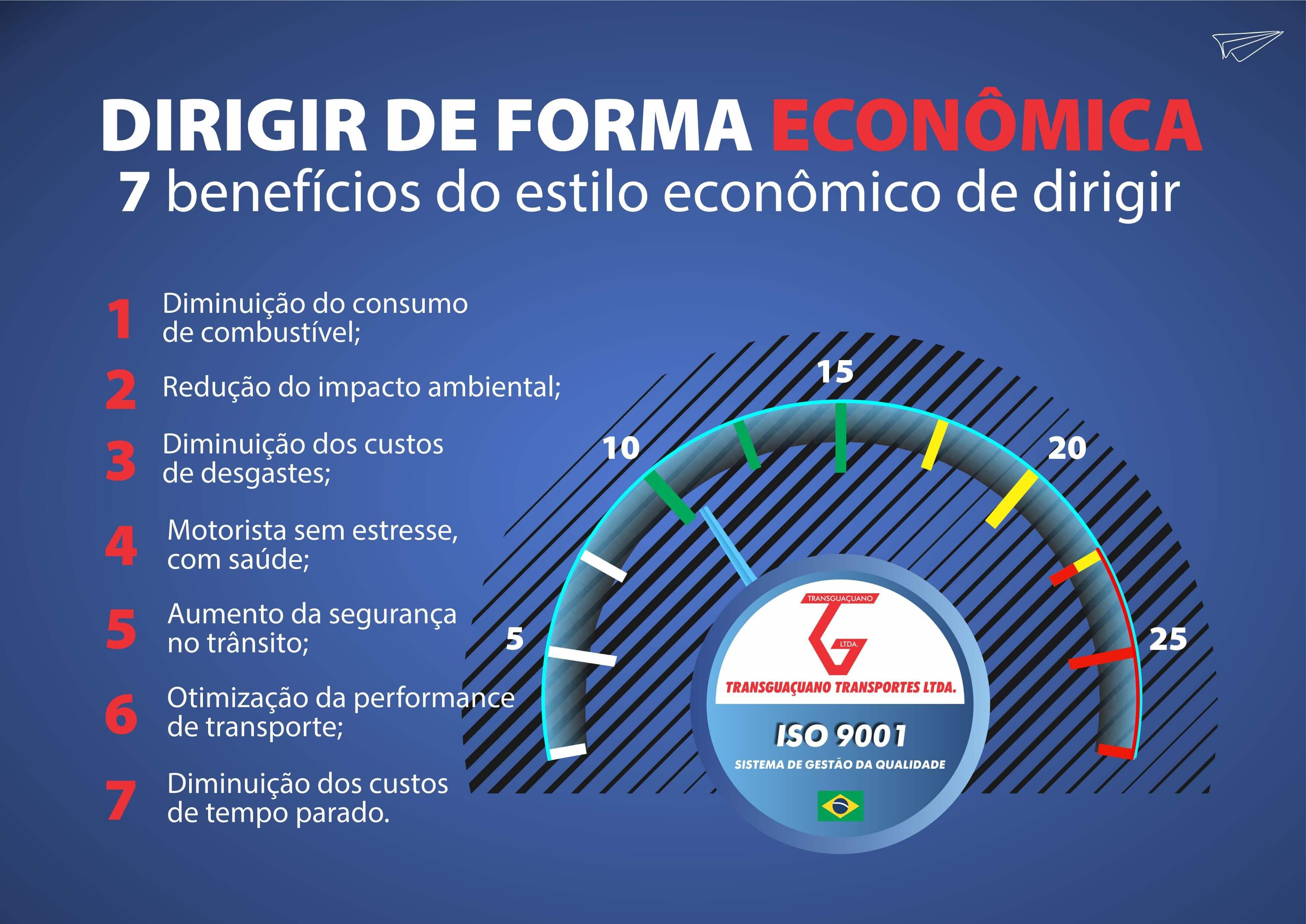 Dirigir-Economico